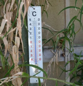 Thermometer150701