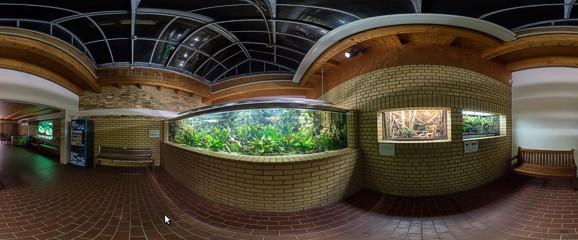 aquarium_neu