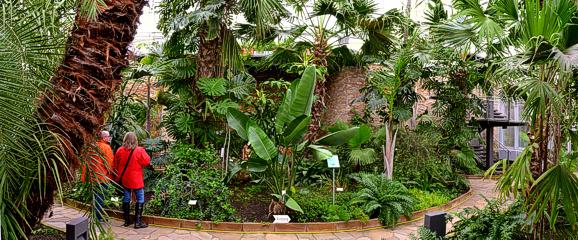 Panorama Palmenhaus