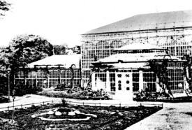 Die Gewächshäuser um 1900
